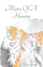 Mates of a Human by Ebonsolaris
