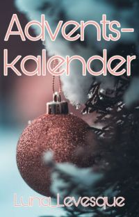 Adventskalender  cover