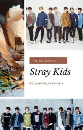 The Big Book of SKZ by Snow_TheOtaku