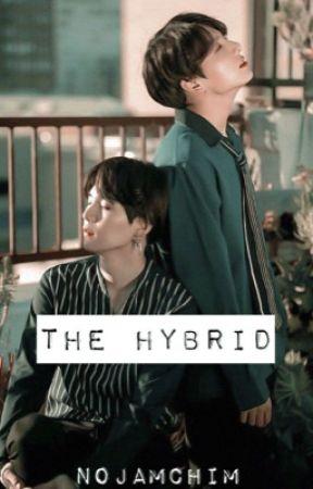 The Hybrid   18+   Yoonkook by NoJamChim