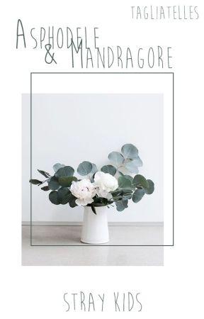 Asphodèle & Mandragore   Jeongchan by Tagliatelles