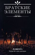 Братские элементы. by floresssta