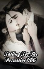 Falling For The Possessive CEO by Author_Shizu