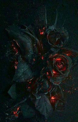 [ HOÀN ] Hoa Trong Bóng Đêm