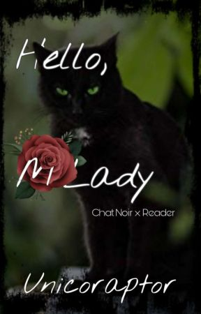 Hello, M'Lady ♡~♡ Chat Noir x Reader by Unicoraptor