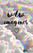 ~ wdw imagines ~ by scriptedseavey