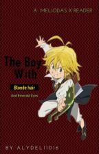 The Boy with Golden Hair and Emerald eyes (Meliodas x reader) (nnt/tsds) by Derukio