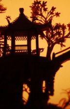 Sueños en penumbras (Mushu y tú) by AkaiTsuki07