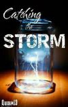 Catching the Storm cover
