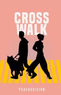 Crosswalk cover