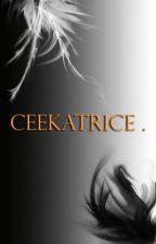 ceekatrice by Cicatrisse