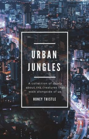 Urban Jungles by Honey-Thistle