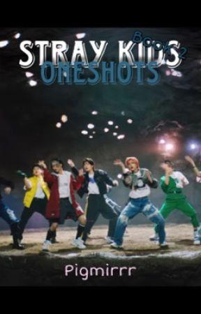 Stray Kids Ship Oneshots (BOOK 2 !) by pigmirrr