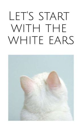 Let's start with the white ears   Ziall by I_am_Teenage