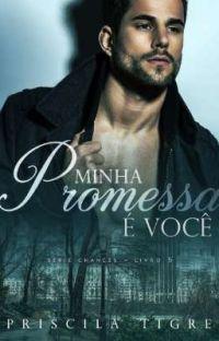 MINHA PROMESSA É VOCÊ - LIVRO V (DEGUSTAÇÃO) cover