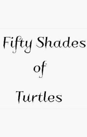 Fifty Shades of Turtles (Street Punks x Female Reader) by DarkEmoCupid