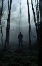 No entres al Bosque by hdmavarezduno