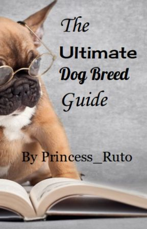 The Ultimate Dog Breed Guide by Princess_Ruto