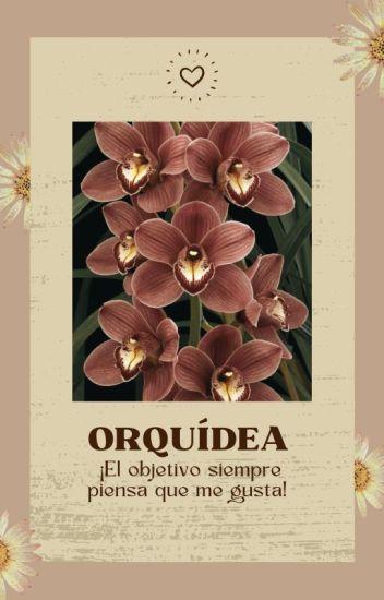 Orquídea - Eres el objeto de mis deseos