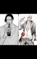 Aokiji X Reader x Doflamingo (Complete) by 8YellowPage