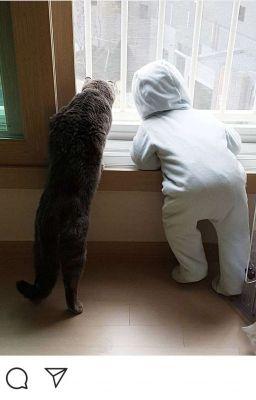 Một Con Mèo Và Hai Con Thỏ [KookMin] [Sinh Tử] [Instagram]