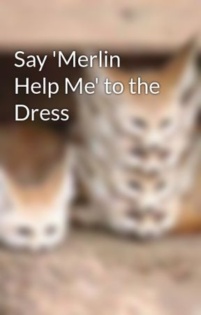 Say 'Merlin Help Me' to the Dress by MotherofBulls