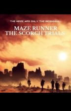 Maze Runner The Scorch Trials |Newt X Reader| by PerryladyIsDaBomb