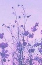 Little Lavender ♦ L.S by whymommyissues