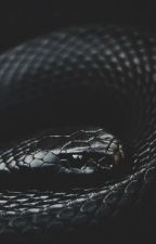 My Little Snake by StrangerWithAPen
