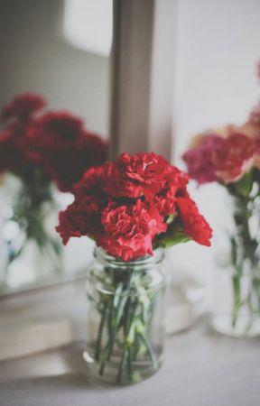 KiriBaku // Carnation by olgahilbert