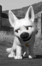 Bolt x Dog!Reader by Detective_Sociopath
