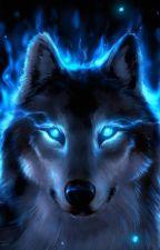 Luna Midnight by Bluegirl24715
