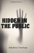 HIDDEN IN THE PUBLIC by twinnietiana