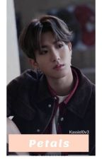 Petals (Han Jisung X Reader) || Book 1 by SKZ-WORLD-DOMINATION
