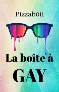 La boîte à gay cover