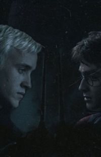 Potter: A Drarry fan fiction cover
