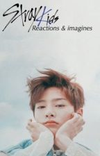 Stray Kids Reactions & Imagines by etherealnctzens