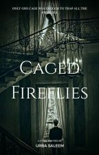 Caged Fireflies (Muslim Story) by UrbaSaleem