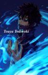 Touya Todoroki |Boku no hero Academia fanfic| *UNDER EDITING* cover
