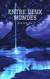 Entre Deux Mondes cover