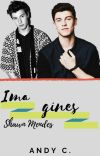 Imagines - Shawn Mendes cover
