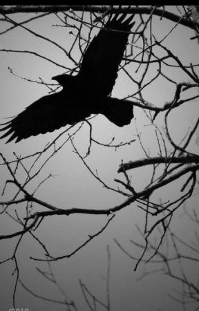 The Crow by FarrellKeeling