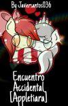 Encuentro Accidental [AppleTiara] cover