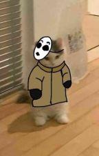 Life With Creepypastas - Creepypastas X Reader by VikingMetalToby