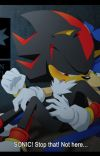The Shadow Within Me (Sonic x Shadow) cover