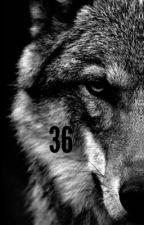 36 by pegasus1327