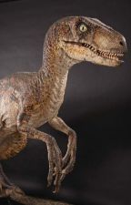 Le monde au Raptor (Fanfiction ARK) by CrystalDragon-Yt