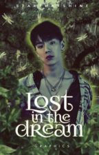 Lost in the Dream: graphics by starthatshine