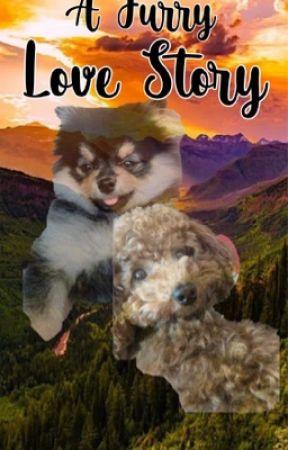 A Furry Love Story ( Yeontan x Holly ) by koyaminjoon
