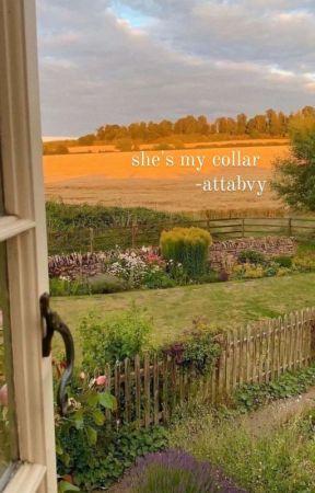 SHE'S MY COLLAR // KATSUKI BAKUGO by ATTABVY